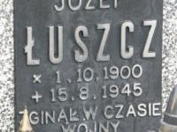 Volytsia-245