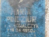 Volytsia-247