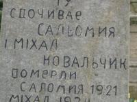 Volytsia-26
