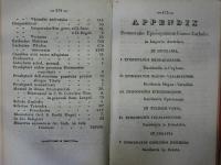 schematyzm_311