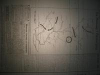 krakivski_visti_1941_566