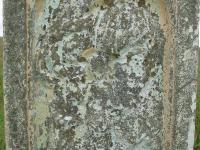 krywa-170