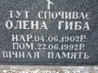 pentna_486