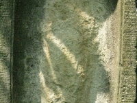 radocyna_126
