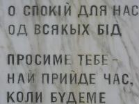 zdynia_036