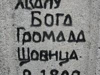 krzewica_07