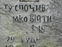krzewica_24