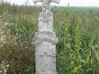 krzewica_36
