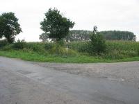 krzewica_57