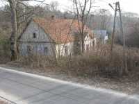 molodycz_208