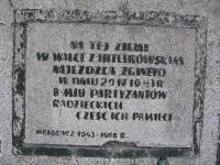 molodycz-11