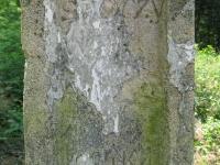 radawa_19