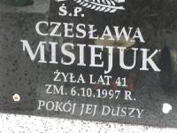 hnijno_349