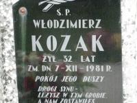 miedzyles_051
