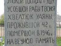 miedzyles_053