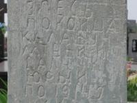miedzyles_082