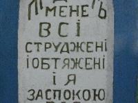 miedzyles_026
