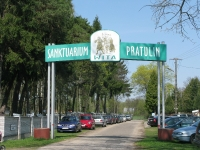 pratulin_103