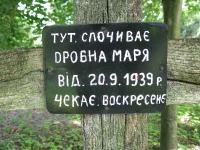 zapalow_064