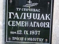 zapalow_100