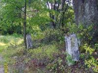 zukow_2006_05