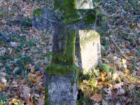 zukow_2006_108