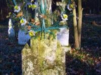 zukow_2006_140