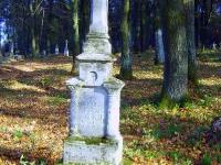 zukow_2006_36